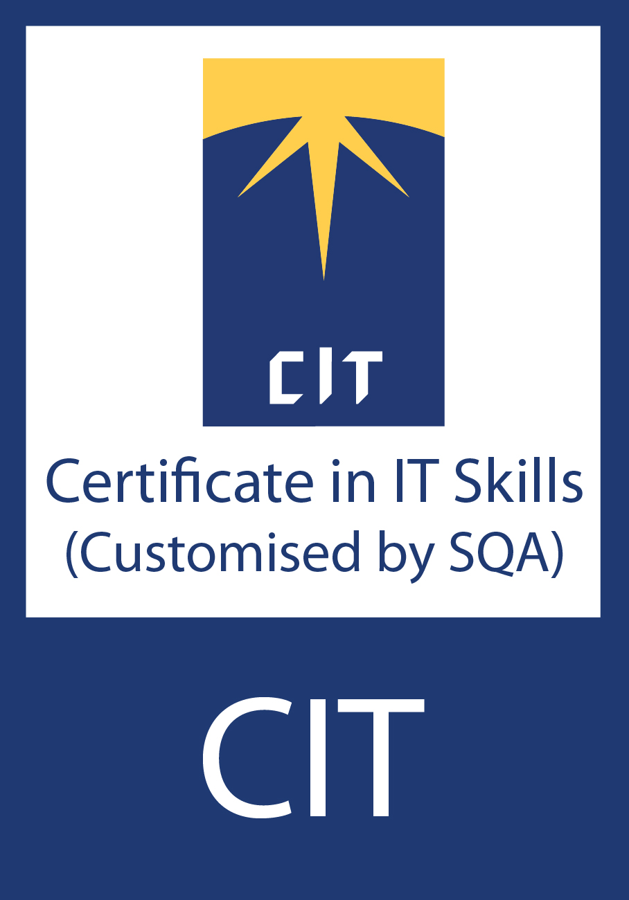 Certificate in IT skills (CIT)